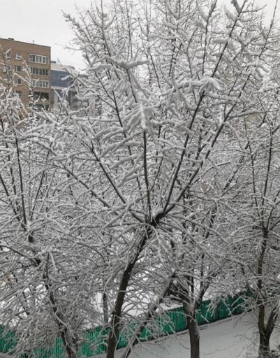 Сергей Пенкин был приятно удивлен погодой