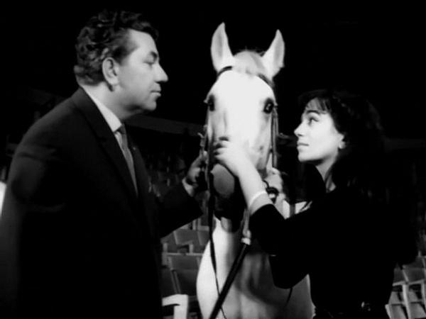 «Мы идем в цирк» (1964)