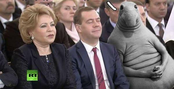 Ждун хочет о чем-то попросить Дмитрия Медведева
