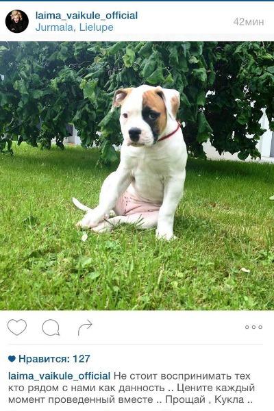 Певица смогла рассказать о смерти собаки лишь спустя два месяца