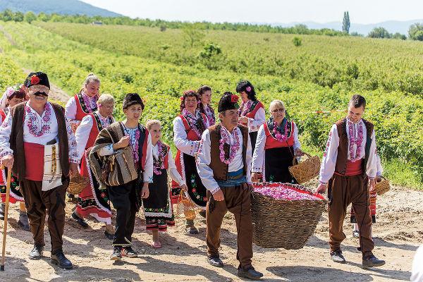 На плантациях в Долине роз гостей встречают целыми семьями