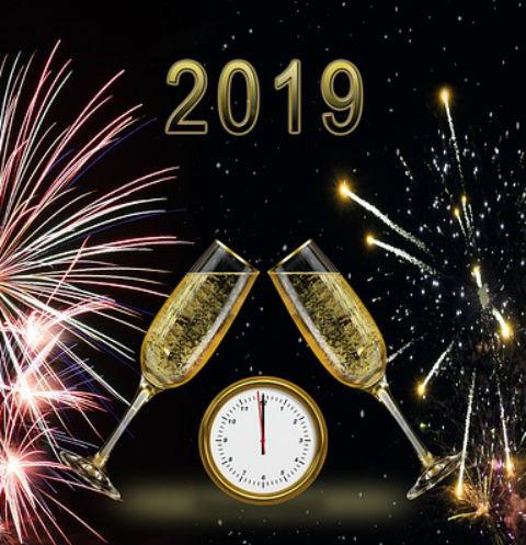 2019-й будет годом желтой земляной свиньи