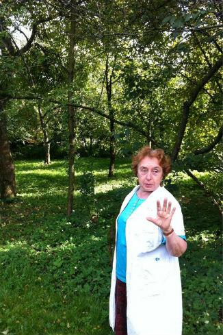В саду прошла лекция о новых сортах яблок