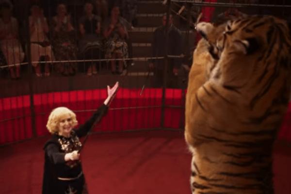 Ольга уже восемь лет дрессирует хищников