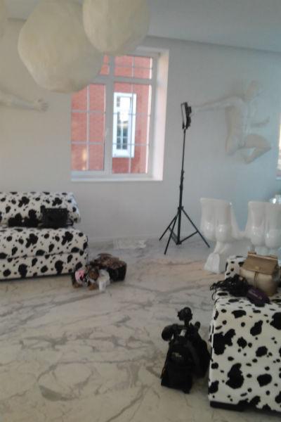 Гости отметили оригинальность оформления дома писательницы
