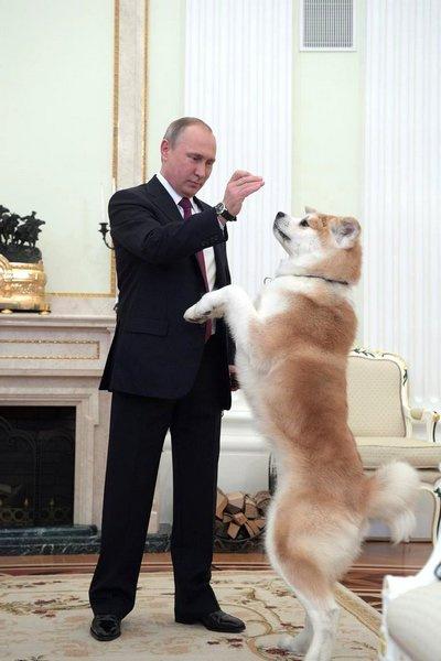 Владимир Путин продемонстрировал способности своего питомца