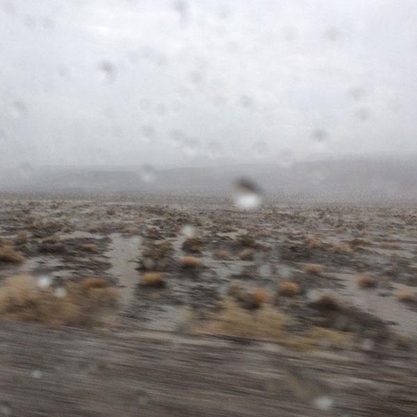 Супругам удалось повидать редкое явление - дождь в пустыне