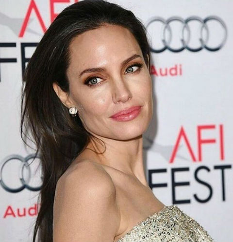 Анджелина Джоли ищет способы примирения с Брэдом Питтом