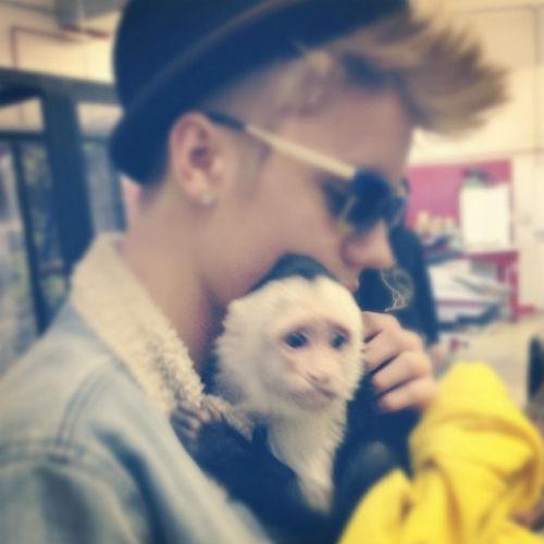 Но, похоже, что больше мы не увидим в хронике Бибера кадров с очаровательной обезьянкой