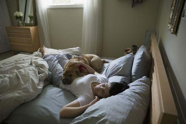 Подушки, одеяла и матрасы необходимо менять раз в несколько лет