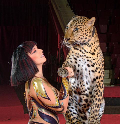Сейчас семья Филатовых гастролирует по всему миру с представлениями «Медвежий цирк» и «Леопарды»