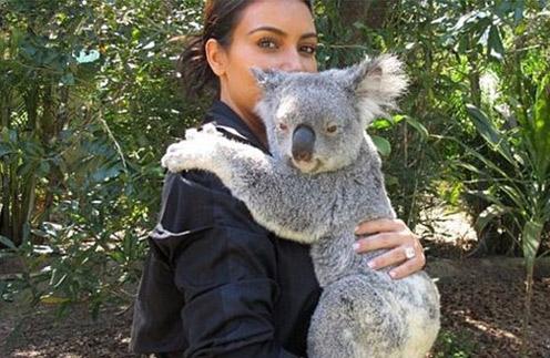 Ким не удержалась и взяла на ручки коалу