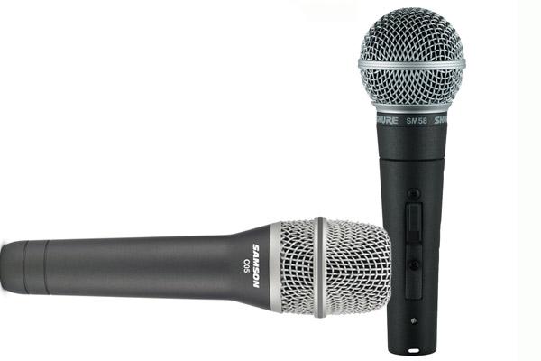 Лиза и Гарри получат профессиональные микрофоны