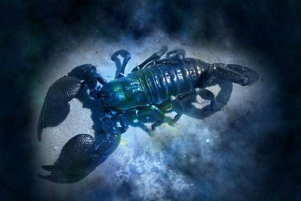 Скорпионам следует не затягивать с выбором места для встречи Нового года