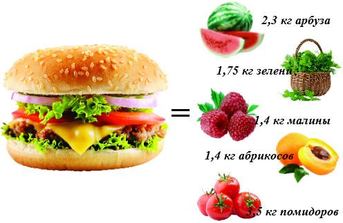 БУРГЕР по праву можно назвать королем калорий.  Его энергетическая ценность достигает 700 ккал.  А теперь представьте, сколько фруктов и овощей  вы могли бы съесть вместо него!
