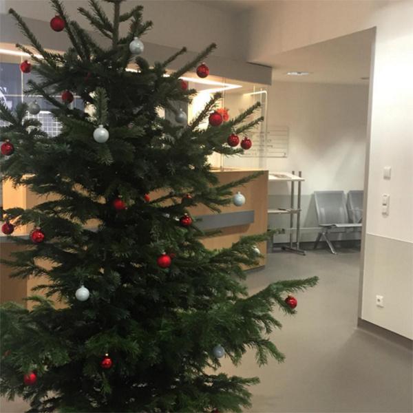 В клинике, где находится Андрей Гайдулян, готовятся праздновать Рождество