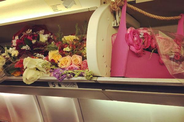 Цветы заняли все полки для ручной клади