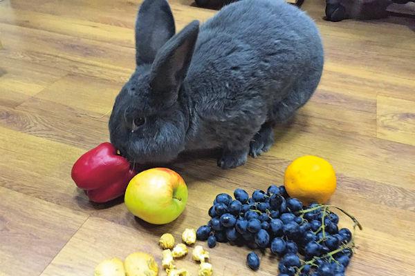 Я слежу за своим здоровьем и налегаю на овощи и фрукты