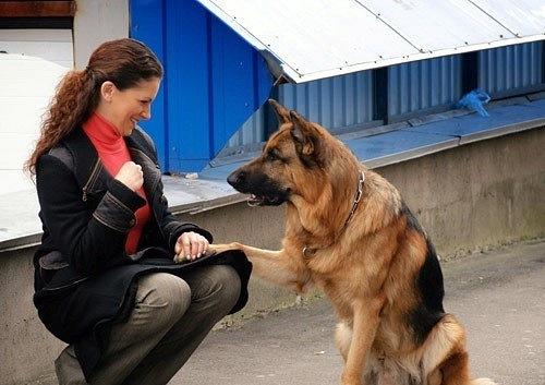 Наталья Юнникова запомнилась зрителям по главной роли в сериале «Возвращение Мухтара»