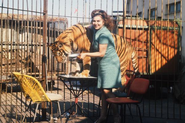 Несмотря на травмы, Назарова от всей души любила своих тигров