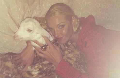 Анастасия Волочкова не знает, что делать с козлом