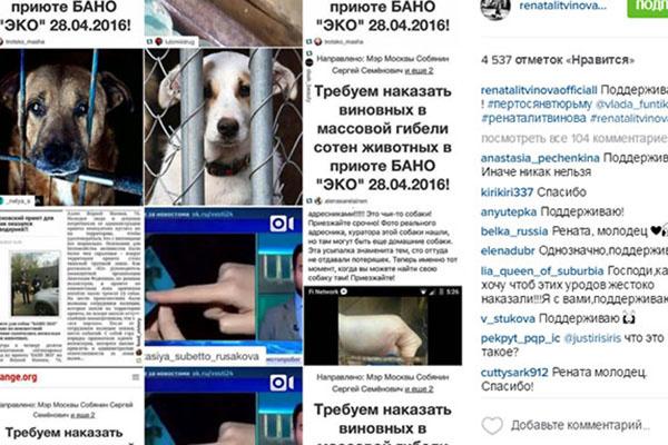 «Поддерживаю!», - написала под этим коллажем актриса и режиссер Рената Литвинова
