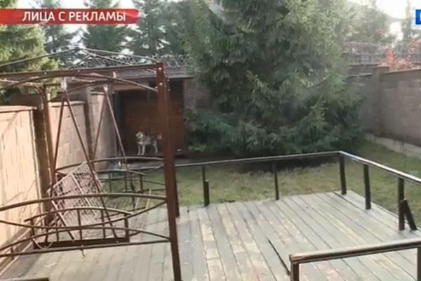 Двор у Александра Пряникова