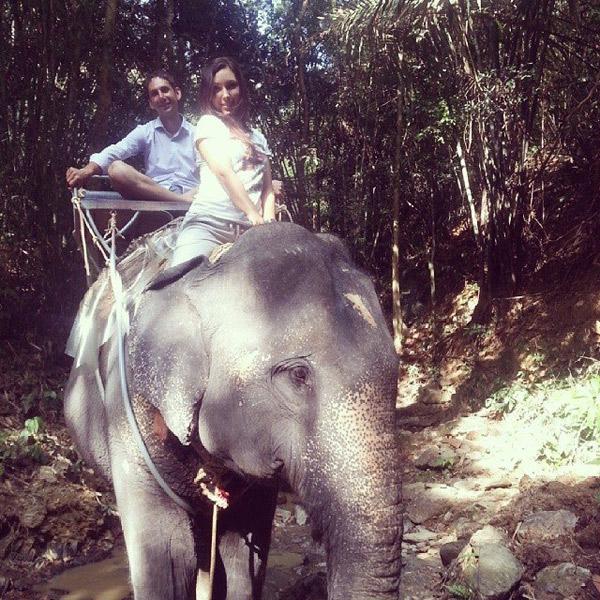 В Таиланде ростовчанка купалась в мужском внимании и вскоре влюбилась в нигерийца Ника. На фото прогулка на слонах, 16 января 2014 года. В подаренном Маше чемодане обнаружили двойное дно, а в потайном отделе – наркотики... Если Маше не удастся доказать свою непричастность, по законам Вьетнама ей грозит смертная казнь