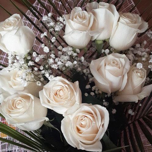 Шикарным букетом белых роз, подаренным любимым, похвасталась участница «Дома-2» Ольга Гажиенко