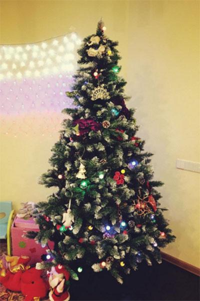 В канун Нового года Елена Исинбаева показала елочку, которую они с мужем Никитой Петиновым нарядили дома для дочки Евы