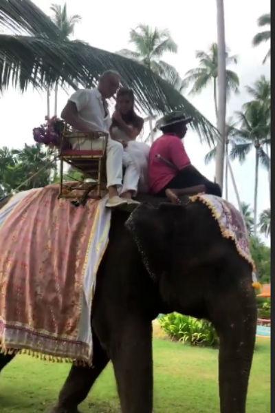 Супруги передвигались верхом на слоне
