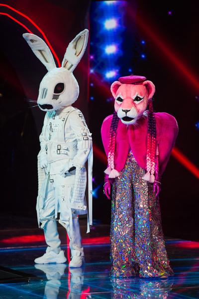 Заяц и Розовая Пантера - новые участники