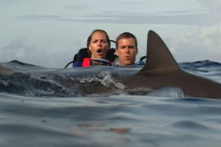 В фильме героев атакуют акулы
