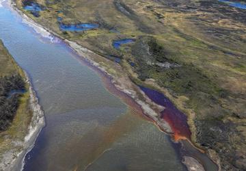 Миллиарды рублей ущерба и уничтожение экологии: какими будут последствия катастрофы в Норильске