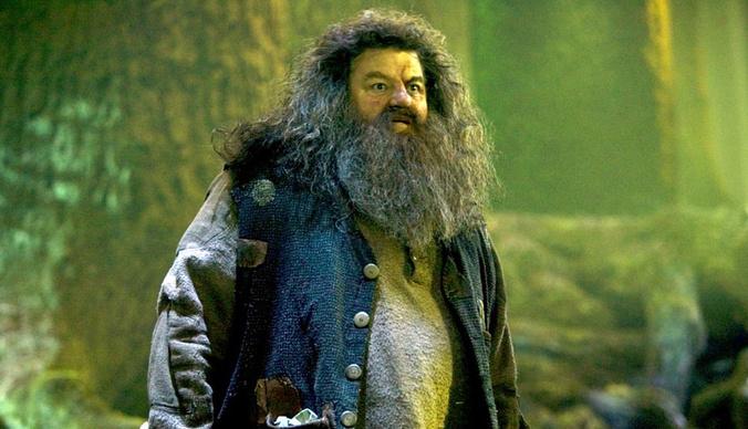 Хагрид из «Гарри Поттера» передвигается в инвалидном кресле
