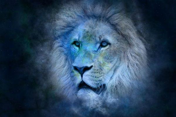 Львам следует отмечать праздники в компании друзей