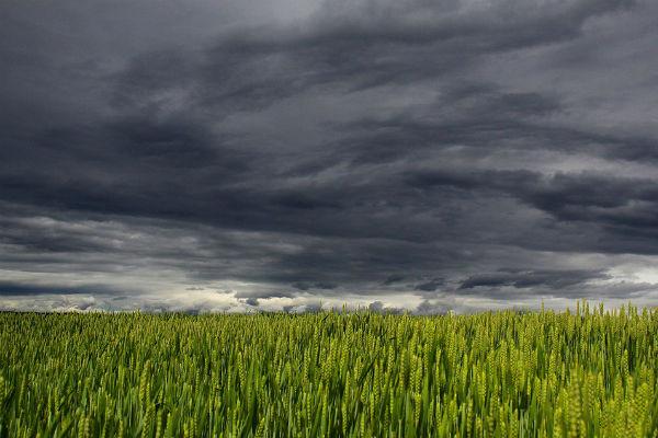 Находясь в поле, важно присесть и отключить все средства связи