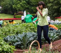 Мишель Обаме не хватает денег на огород