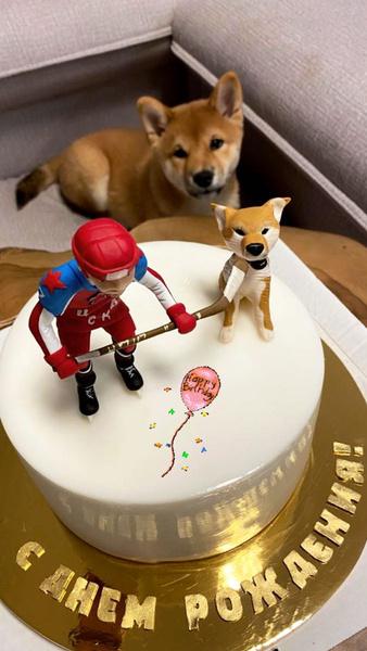 Телегин показал праздничный торт