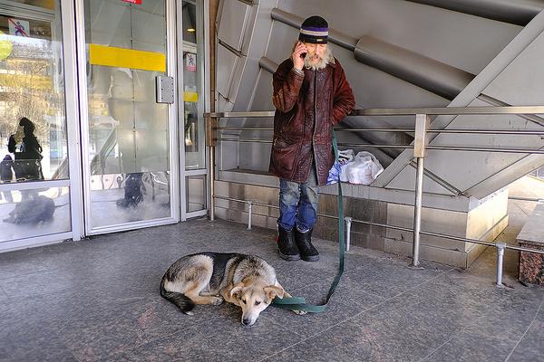 Вячеслав уверен: животные никогда не предадут. Мужчина с хвостатым другом Рэксом