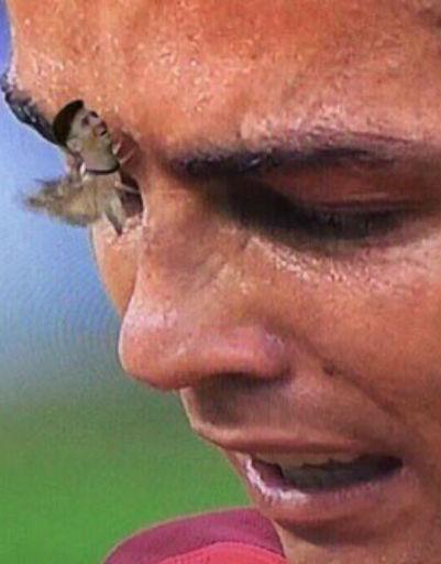 Если приглядеться, то у мотылька можно увидеть лицо Лионеля Месси