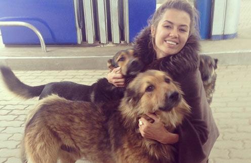 «Как же я люблю собак!» - признается телеведущая