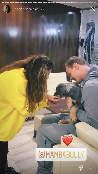 Анна и Янис взяли собаку из Америки