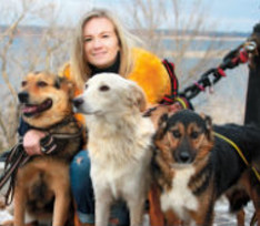Бездомные собаки из Волгограда начали новую жизнь на Мальте