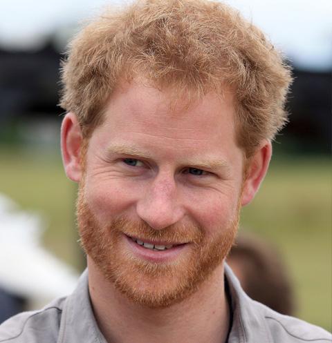 Королевская семья восхищена новой избранницей принца Гарри