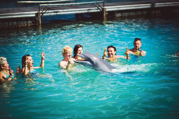Кажется, доминиканским дельфинам наши победители понравились