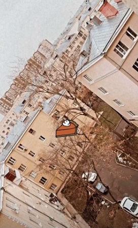 Вид из окна новой квартиры Анны