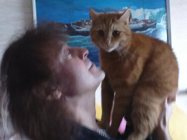 Кот Александра Добрынина прожил 17 лет