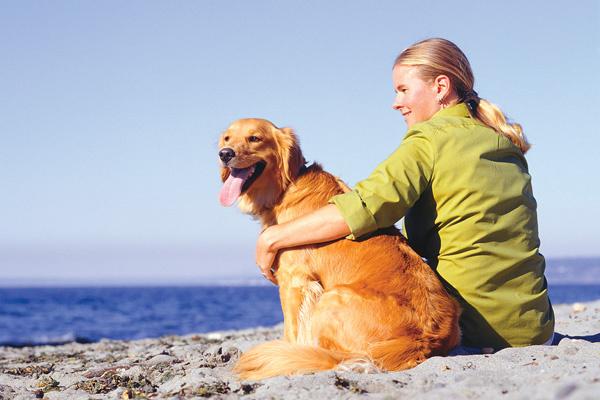 Общество: Как избежать опасностей пляжного отдыха: 15 главных правил – фото №9