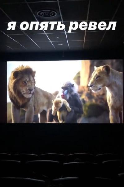 После отпуска Шепелев с сыном ходили в кинотеатр на «Короля Льва»